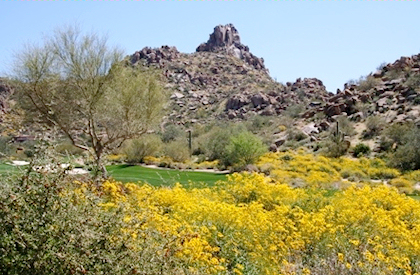Estancia in Troon Scottsdale AZ Community Information