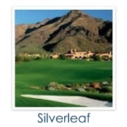 Silverleaf Golf Homes
